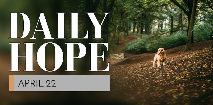 daily-hope-apr22